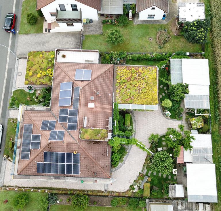 EcoFlora Dachbegrünung Referenz